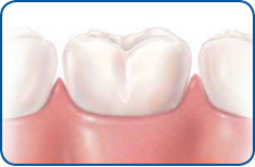 trans_dental-visits01